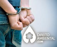 Direito-Ambiental-thumb-16