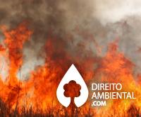 direito-ambiental-thumb-30