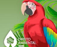 Direito-Ambiental-thumb-68