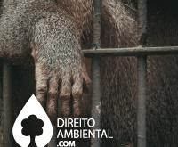 Direito-Ambiental-thumb-70