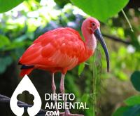 Direito-Ambiental-thumb-77