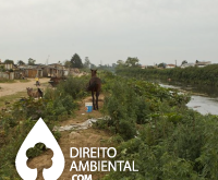 Direito-Ambiental-thumb-95