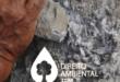 Direito-Ambiental-thumb-21