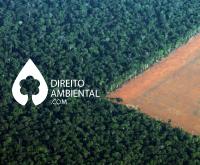 Penal Ambiental: Para TRF1 não se aplica o princípio da insignificância quando o acusado responde a mais de uma ação por crime ambiental